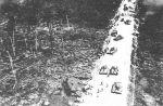 Zdjęcie wykonane z szturmowego Ił-2 podczas ataku na kolumnę czołgów latem 1944r.