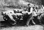 16.06.1944. Część pomordowanych prze UPA pod Zatylem Polaków przewieziono na stacje kolejową w Bełżcu drezynami