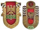 odznaki WOP: 1. złota odznaka wzorowy żołnierz Wojsk Ochrony Pogranicza (1950), 2. Odznaka 10-lecia WOP (1955).