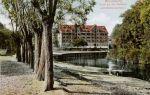 Spichlerz Pod Złotym Lwem wybudowano w 1806 r. u szczytu powodzenia w handlu lnem Johanna Oestreicha. Później spichrz należał do Ignatza Grunaua, a następnie wraz z Wielkim Młynem przeszedł na własnością elbląskiej fabryki Schichau