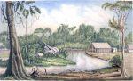 1856. Osada Savolo Creek nad rzeką Grey Town. Amerykańska stacja tranzytu drewna w Nikaragui, na brzegu widoczny rozbity, pochylony parowiec