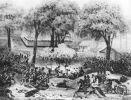 Bitwa pod Liberty Gap stoczona w dniach 24-26.06.1863r. Zwycięstwo wojsk Unii. Generał August Willich poprowadził swoją brygadę zdobywając wzgórze bronione przez 2 brygady konfederatów.