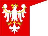 Czytaj więcej: 1410. CHORĄGIEW BRANIEWSKA w BITWIE pod GRUNWALDEM